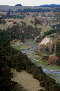 River view2